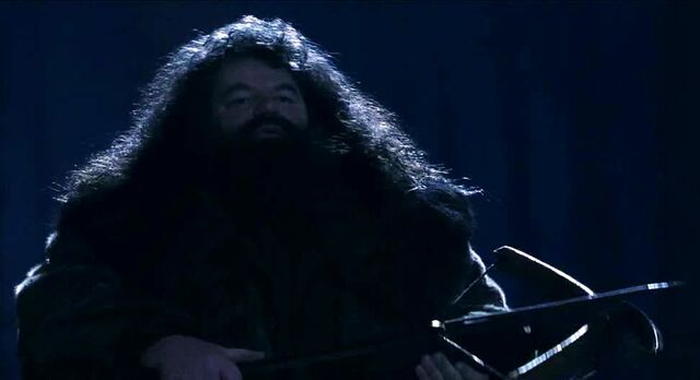 File:Rubeus Hagrid crossbow P S 1.jpg
