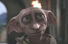 Dobby at Hogwarts