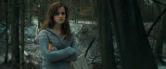 File:Hermione after Ron's return.JPG