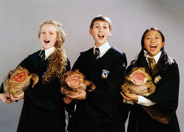 File:Harry-potter-prisionero-azkaban-promo-29.jpg