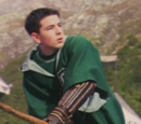 Unidentified Slytherin Beater