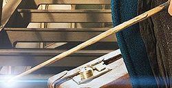 File:Newt wand.jpg