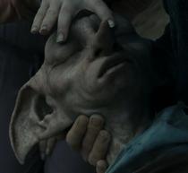 Luna closing Dobby's eyes