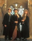 Ron+Harry+i+Hermiona+ 001
