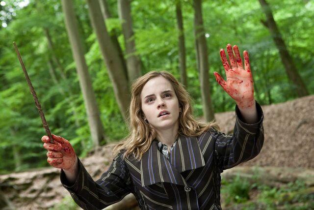 File:Hermione force field.JPG