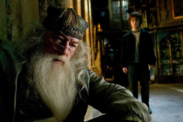 File:Albus and Harry.JPG
