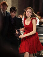 Ron, Harry and Hermione wedding attire