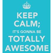 Its gonna be totally awesome