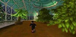 Evergreen Environment