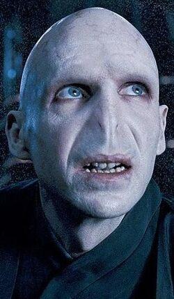 OOTP Voldemort cropped