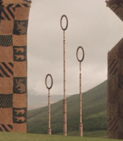 Quidditch goal post's