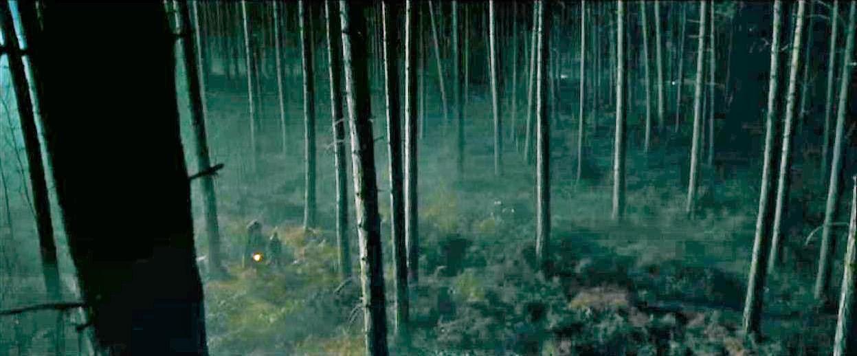 Znalezione obrazy dla zapytania forbidden forest