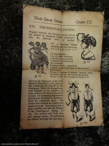 File:Polyjuice-Potion-Page-1.jpg