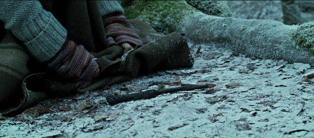 File:Harry-potter-deathly-hallows1-movie-screencaps.com-11106.jpg