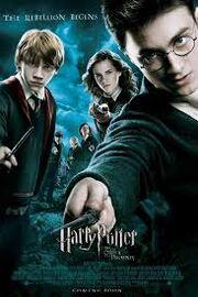 Harrypotterhermioneron