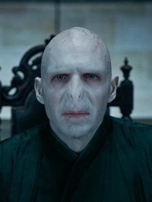 Fil:Voldemort2.jpg