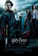 Harry Potter and the Goblet of Fire (film)
