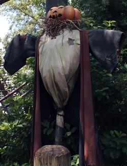 ScarecrowWWOHP