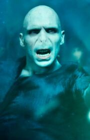Voldemort Cropped
