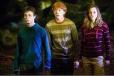 Potter 8