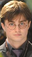Harry Potter Deathly Hallows Profile