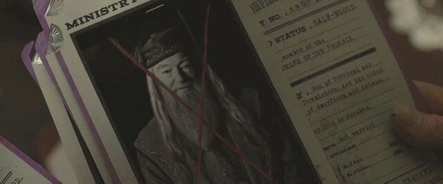 File:Dumbledore's file.JPG