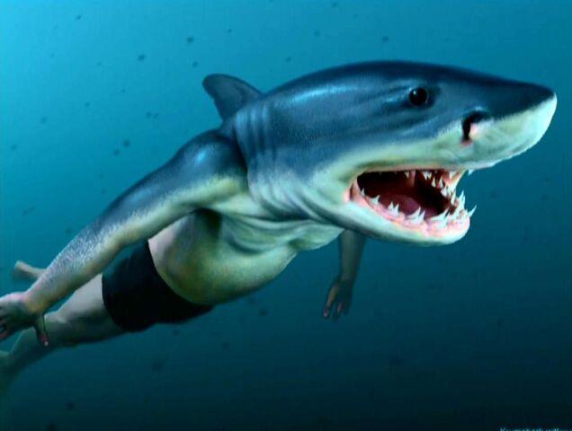 File:Conceptual Artwork of Viktor Krum (Half-human, Half-shark).JPG