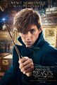 Fantastic-Beasts-and-Where-to-Find-them-Character-Posters-7.jpg