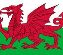 Welsh National Quidditch team