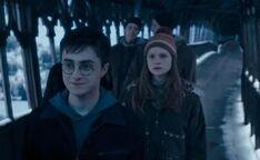 Ginny's shock