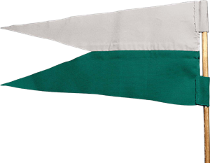 File:Slytherin™ Flag.png