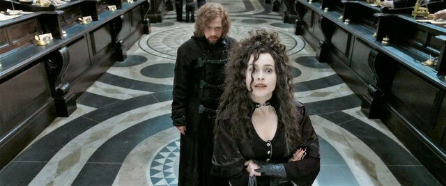 File:Hermione & Ron In Disguise.jpg