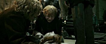 DH2 The Weasleys beside dead body of Fred