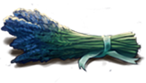 LavenderPlant