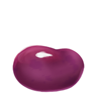 File:A Bertie Bott's Sugared Violet-Flavoured Bean.png