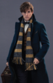 NewtonScamander-Profile.PNG