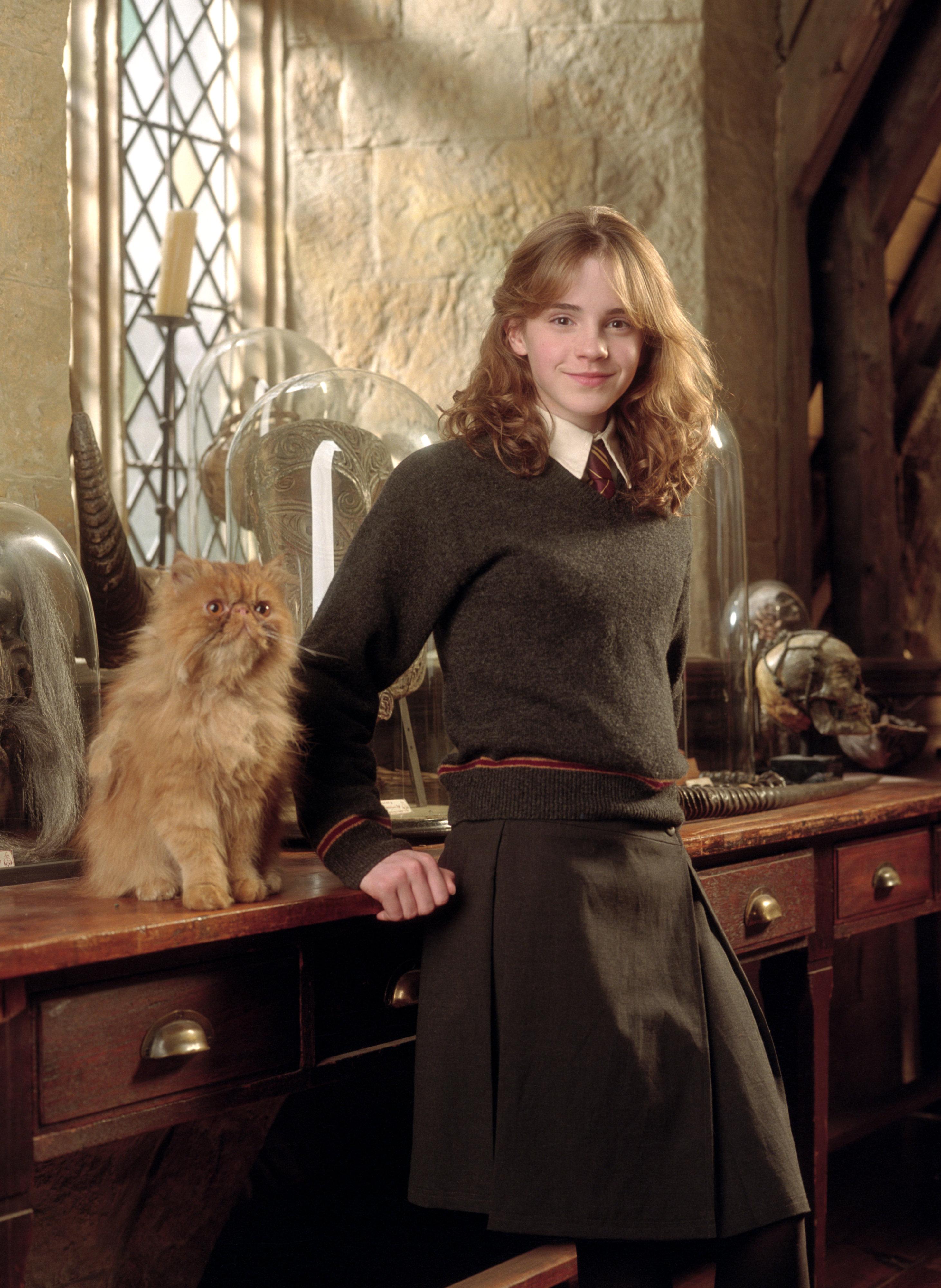 Bestand:Hermione poa.jpg