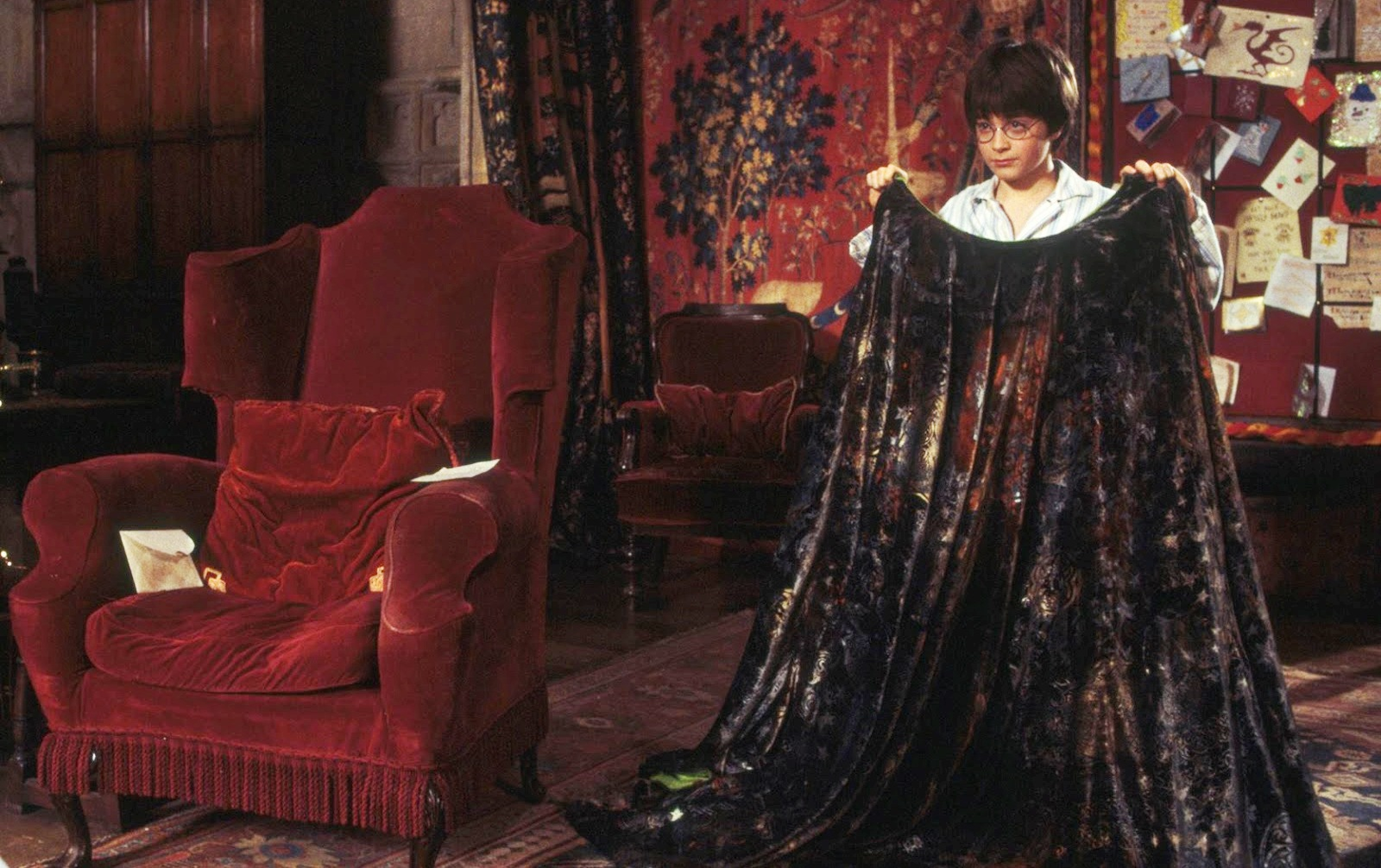 Image result for the invisibility cloak harry potter
