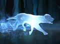 Mongrel Dog Patronus.png