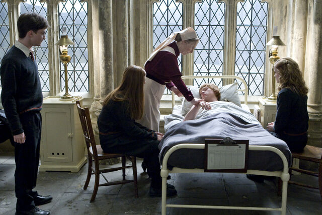 File:Ron Weasley being admit on the Hospital wing.jpg