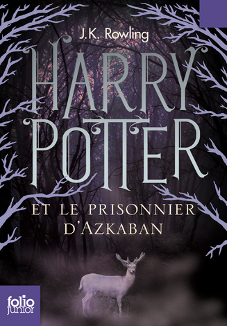 File:French T3 (2011 new edition).png