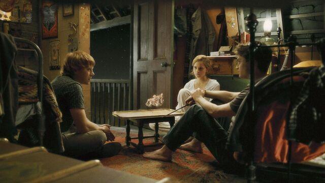 File:The Trio inside the Burrow.JPG