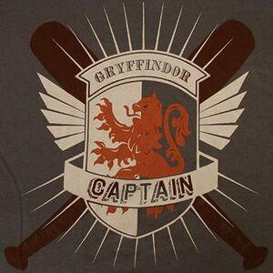 Gryffindor Quidditch Captain