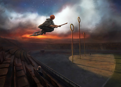B3C13M1 RonFlyingFireboltAtQuidditchPitchWithHarryWatching