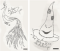 Sketches of Fawkes and the Sorting Hat by JKR from Conversations With J.K. Rowling.png
