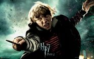 Harry-Potter-and-The-Deathly-Hallows-Part-2-Wallpapers-8