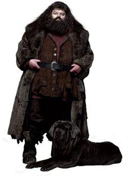 Hagrid and Fang