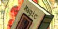Magic (book)