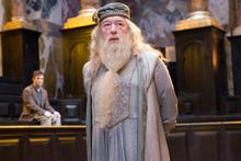 Dumbledoree.PNG