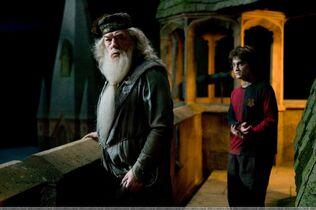Dumbledore&Harry